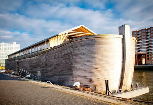 noah-arks-4.jpg