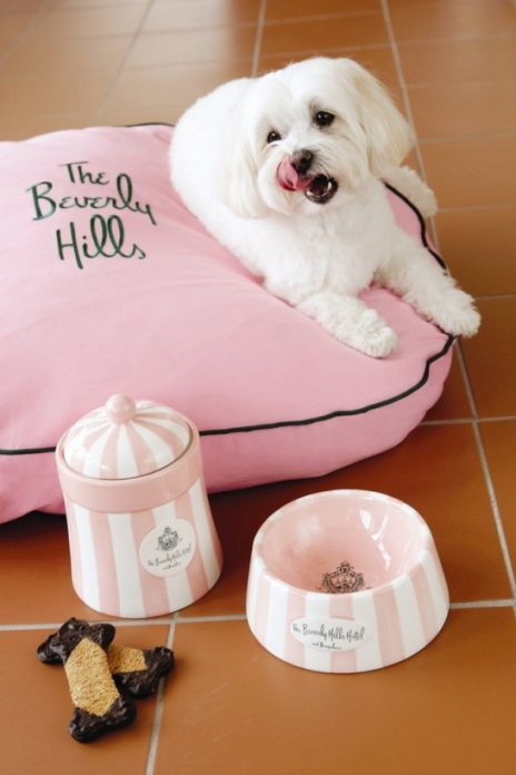 The Beverly Hills Hotel_Dog Amenity_September 2009_low res