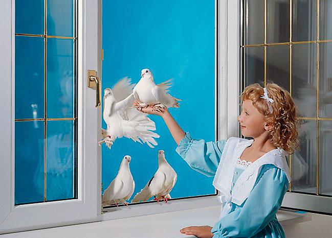 plastikovie-okna-v-dome-2