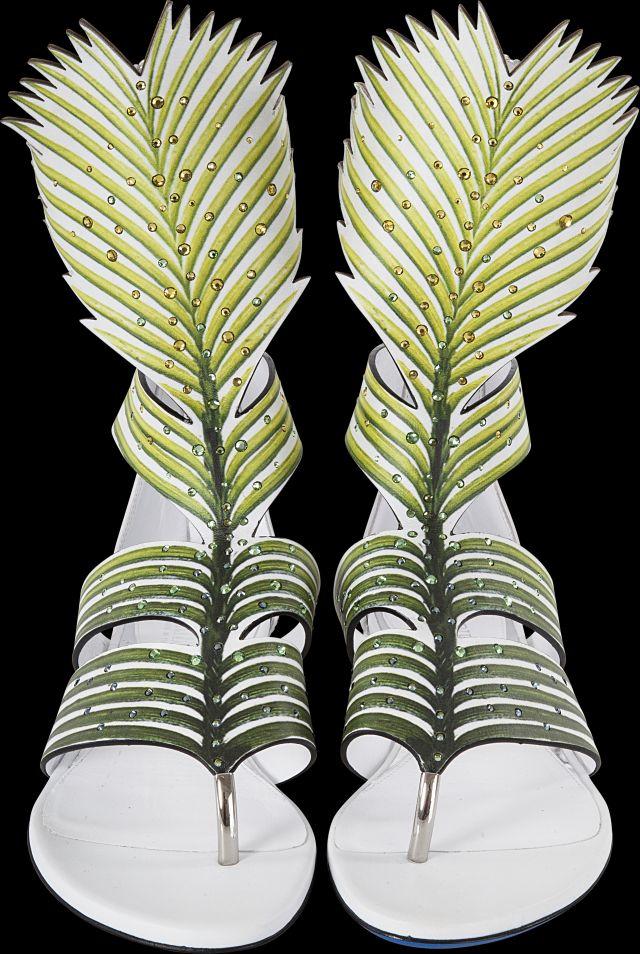 Loriblu - природа тропиков